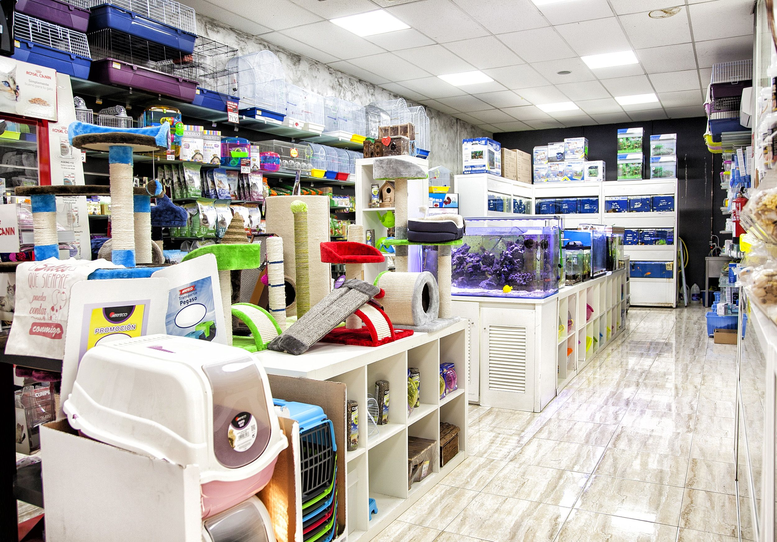 Accesorios, ropa y complementos para mascotas