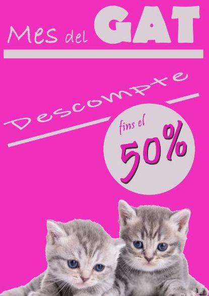 Mes del gato: 50% de descuento