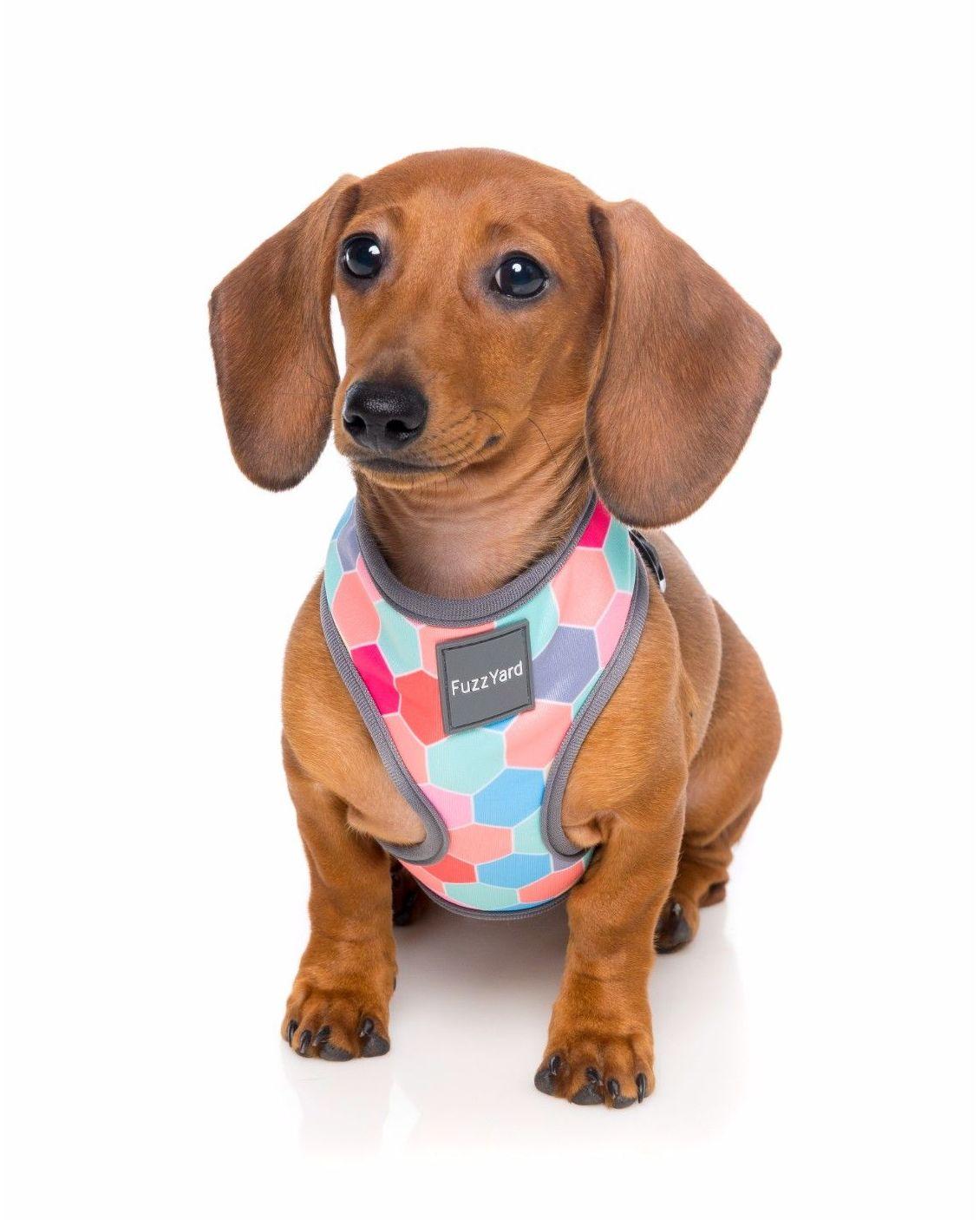 Arnés Fuzzyard: Productos y servicios de Més Que Gossos