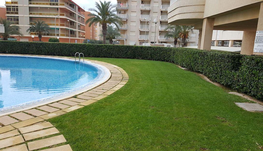 Mantenimiento de jardines de comunidades en Miramar, Valencia