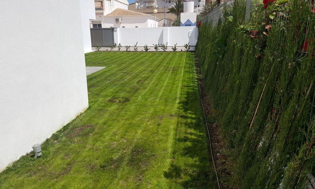 Jardineros en Miramar