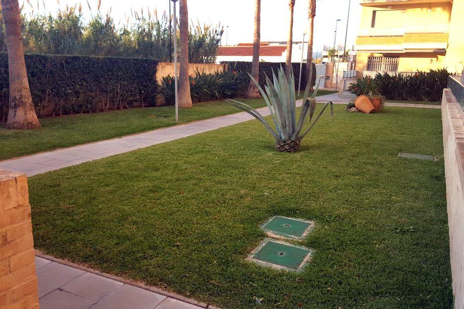 Tratamientos fitosanitarios de jardines en Miramar, Valencia