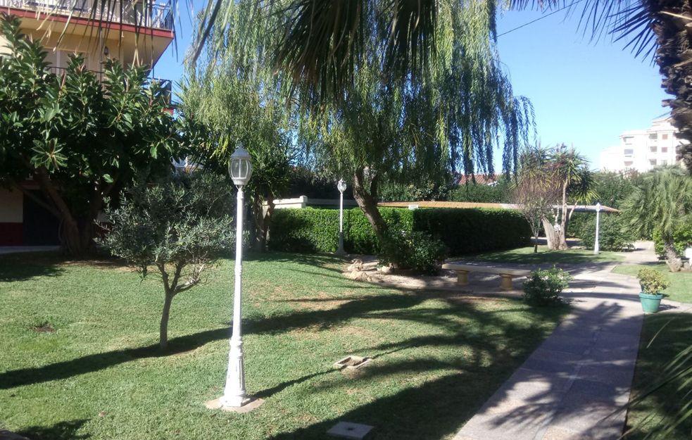 Poda de jardines en Daimuz, Valencia