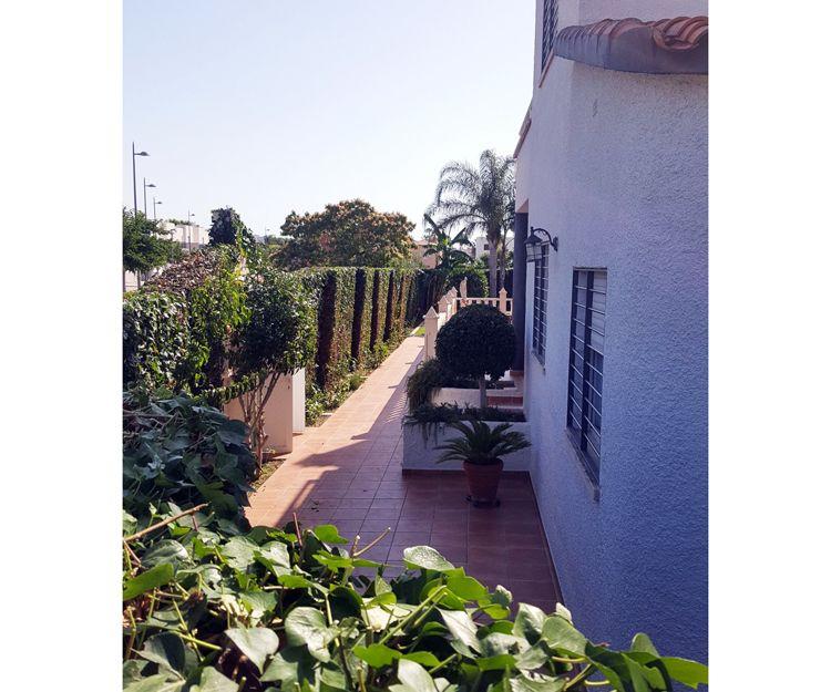 Jardineros en Daimuz, Valencia