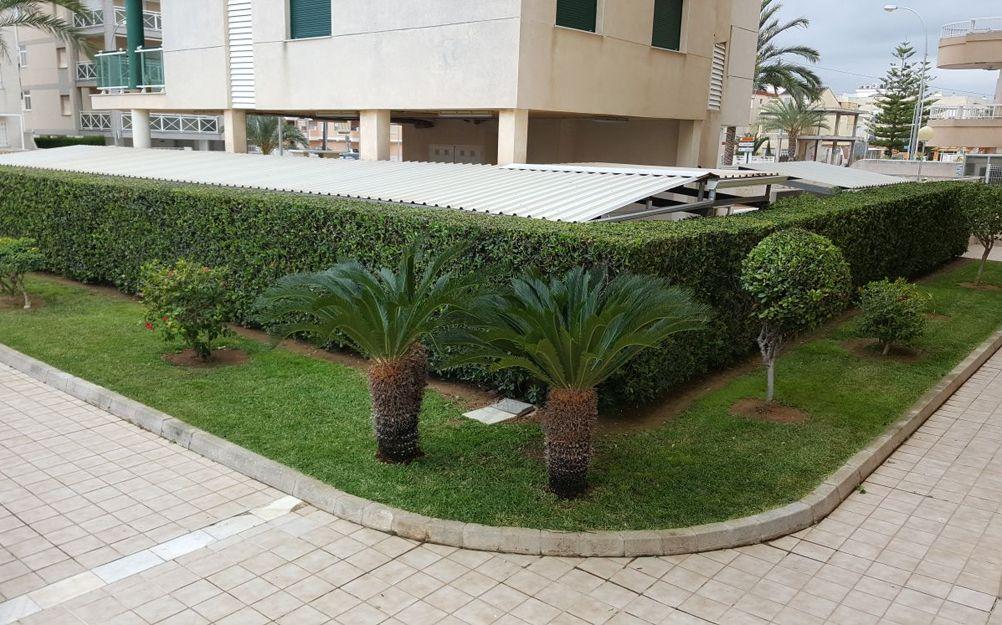 Empresas de jardinería en Oliva, Valencia