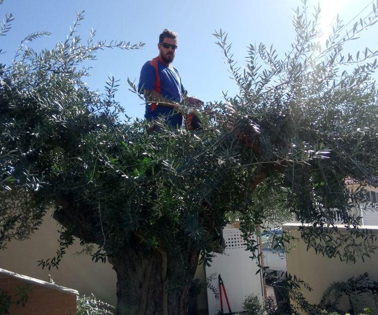 Jardinero en Gandía