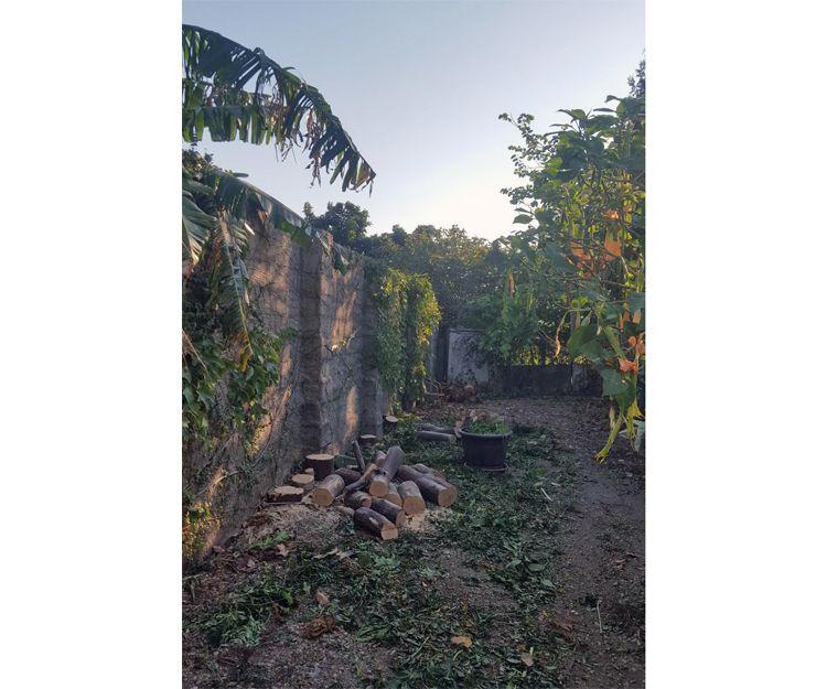 Jardinería y mantenimientos en Granada