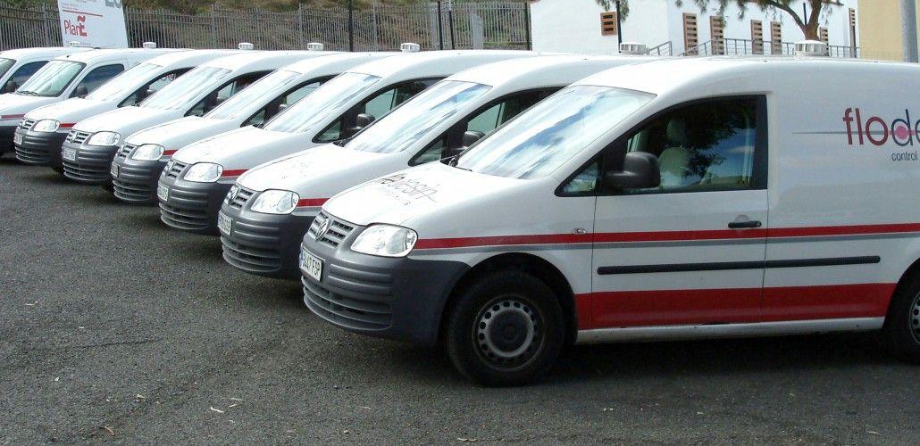 Presupuesto control de plagas en Las Palmas