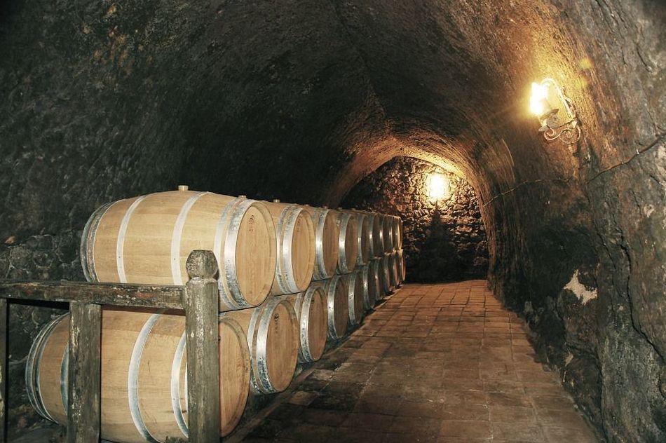 Instalación, reparación y mantenimiento de maquinaria vitivinícola en Zaragoza y Soria