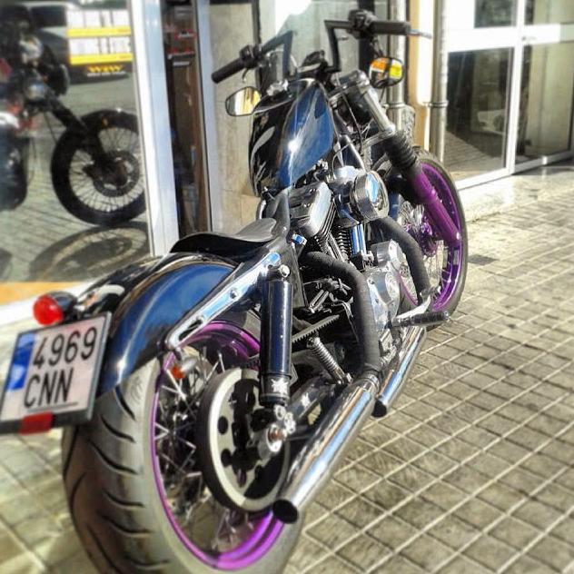Break Skull Choppers, personalisation of Harley Davidson