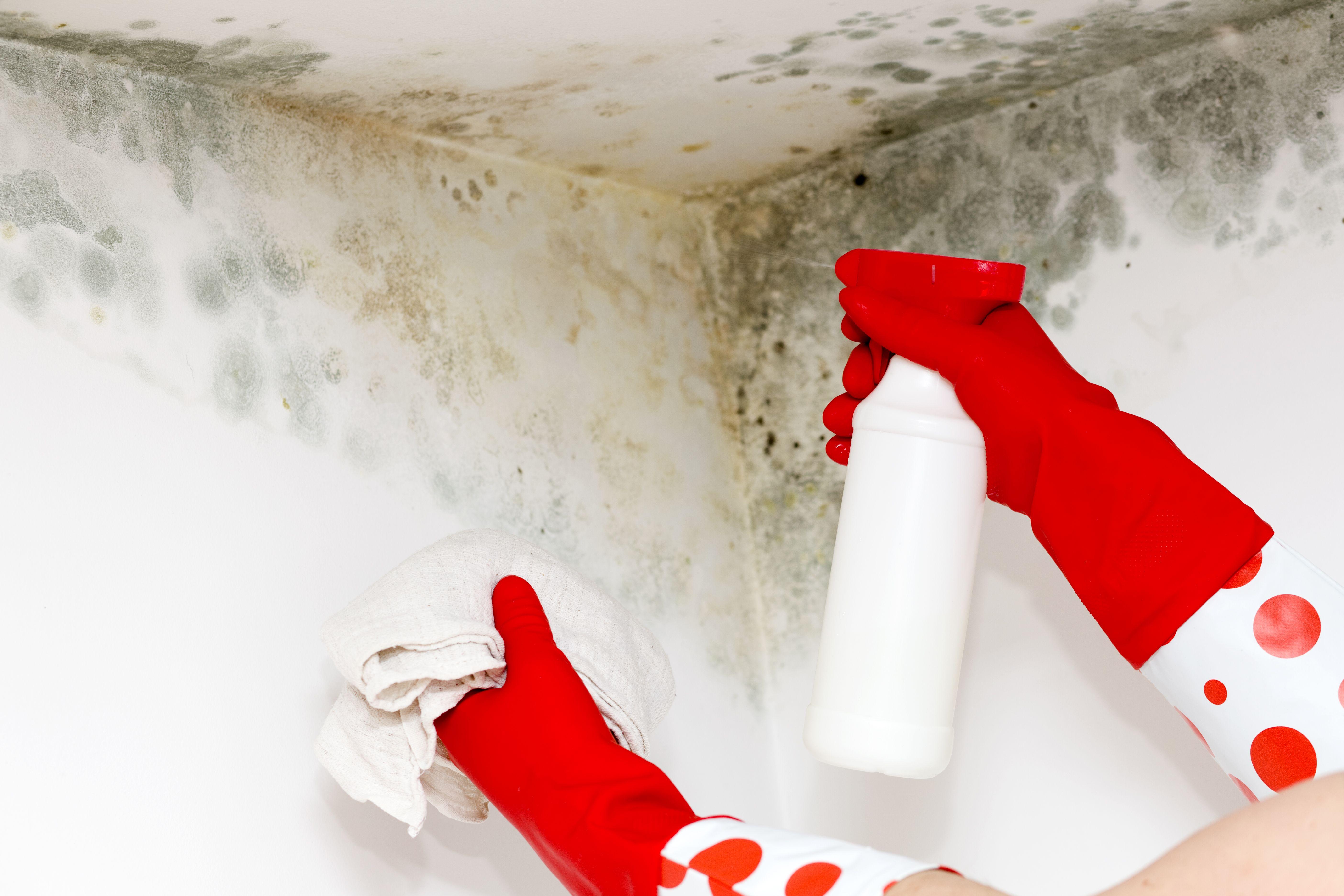 Empresa de limpieza en Granollers
