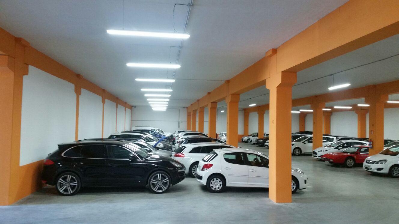 Gran exposición de coches de ocasión en Munguía