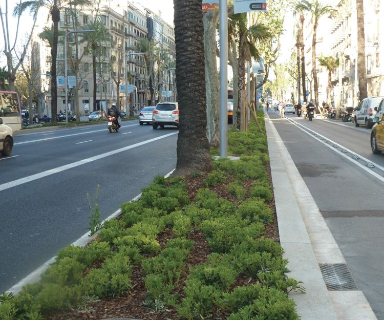 Trabajos de desarrollos urbanos en Barcelona