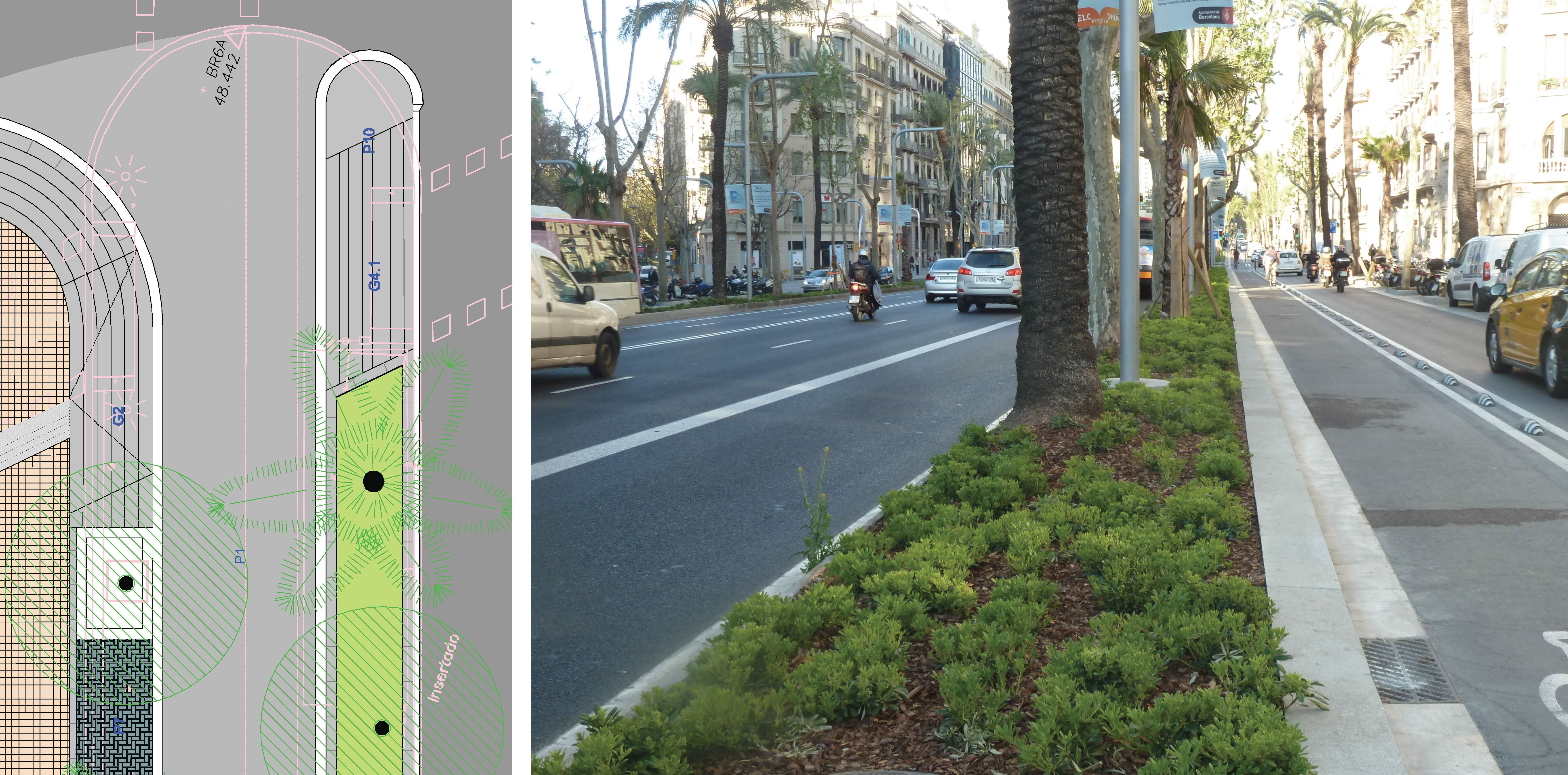 P. M. de la reforma de la Av. Diagonal de Barcelona: Trabajos de MasterPlan