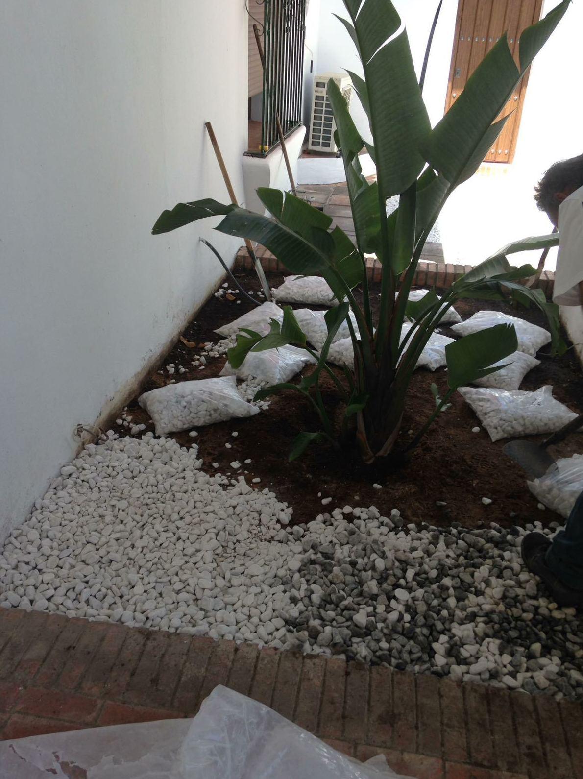 jardineros cádiz