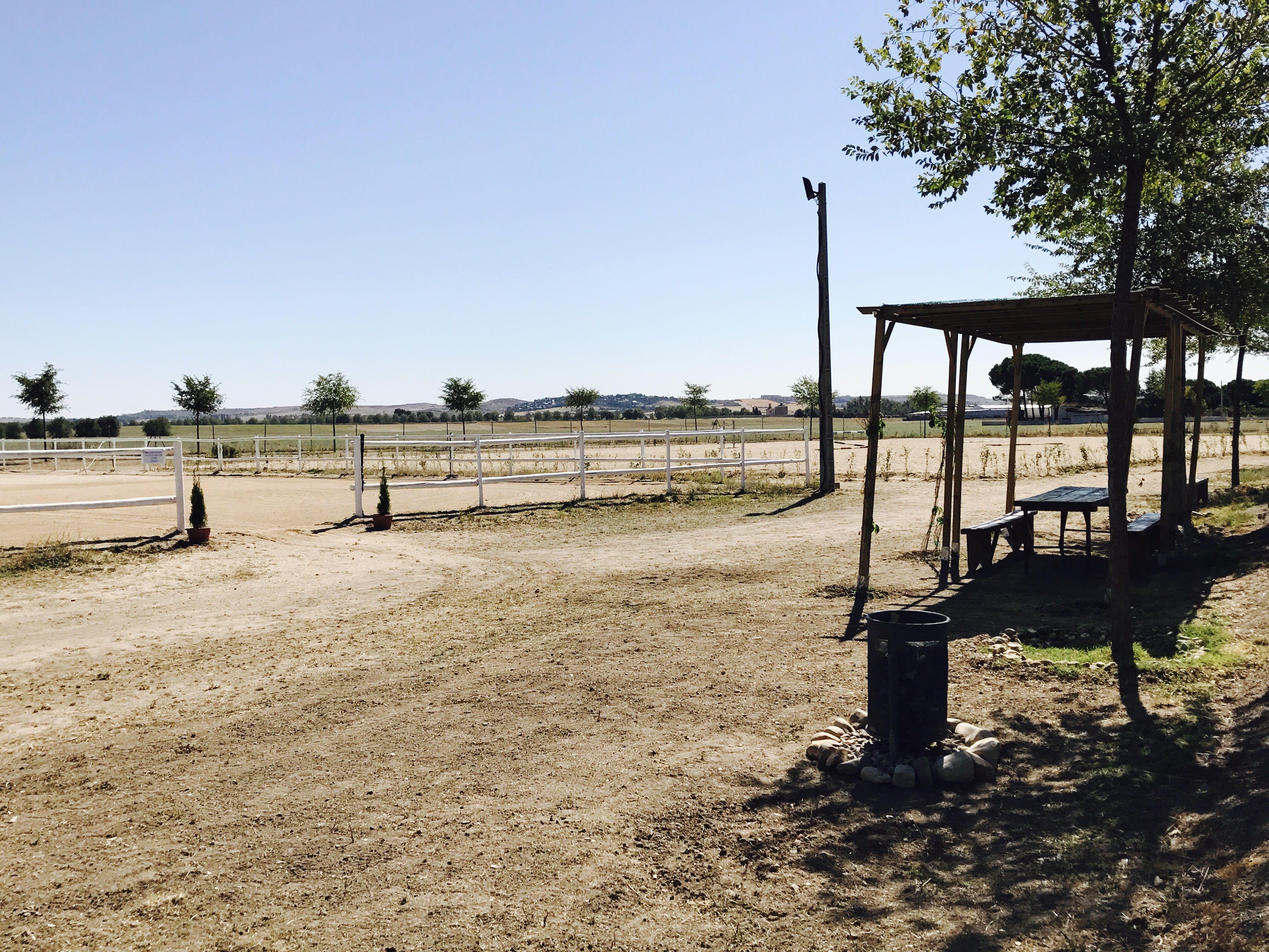 Excelentes instalaciones para montar a caballo en Madrid