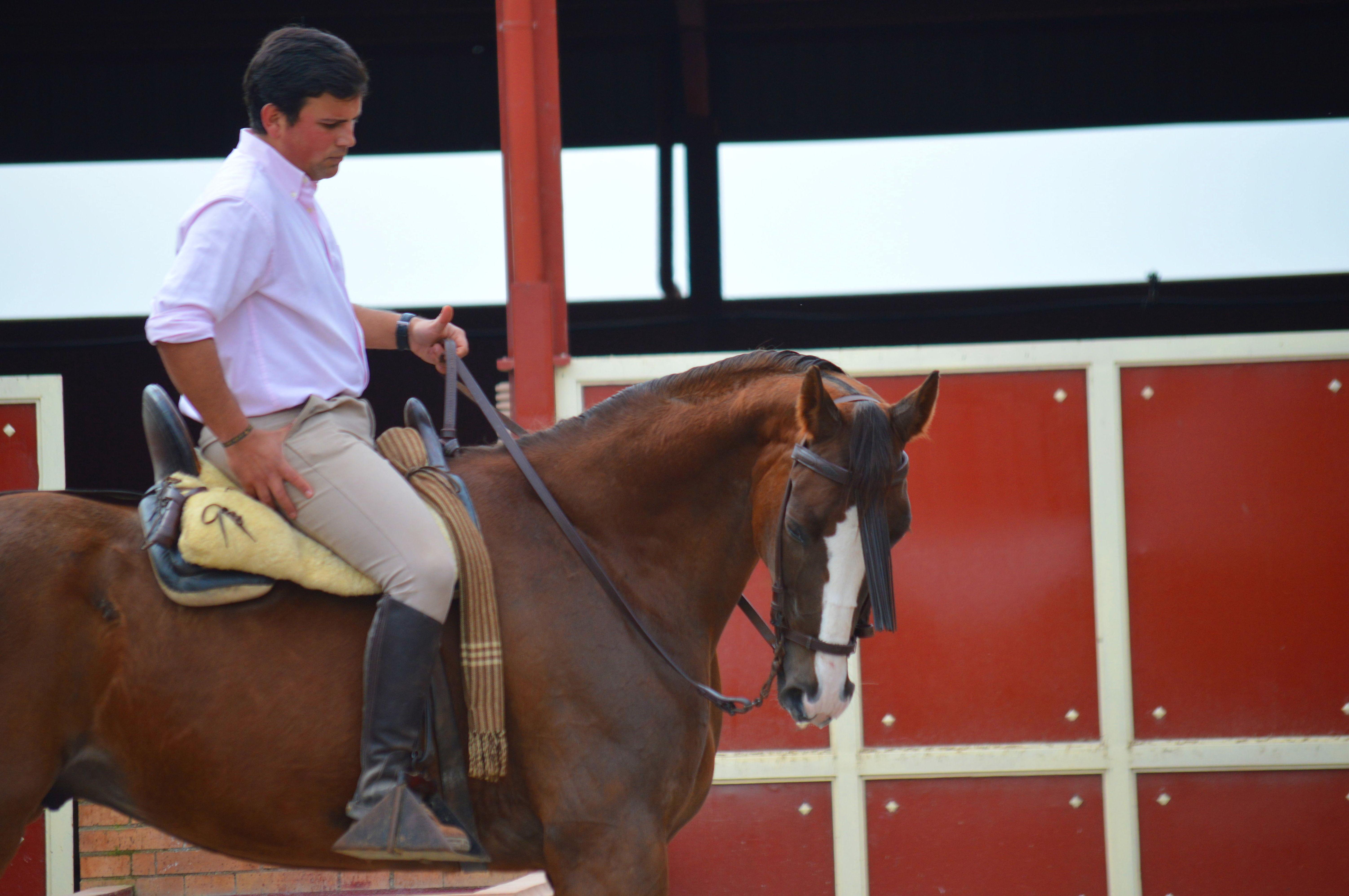 paseos a caballo madrid