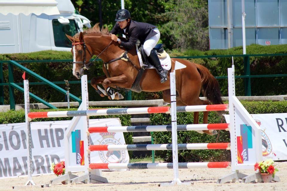 Doma y salto a caballo en Madrid