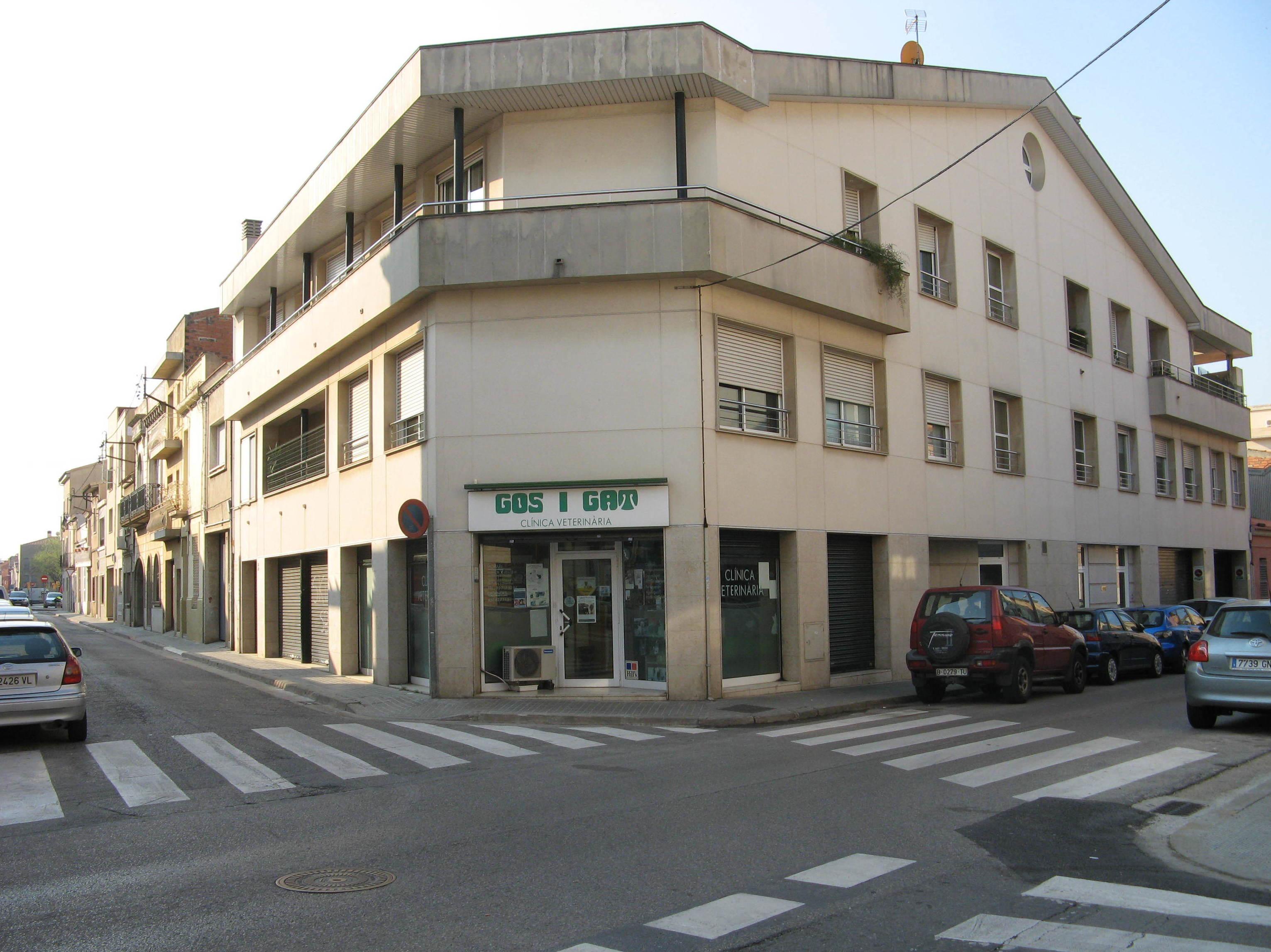 Foto 7 de Clínica veterinaria en Sabadell | Gos i Gat clínica veterinària sl