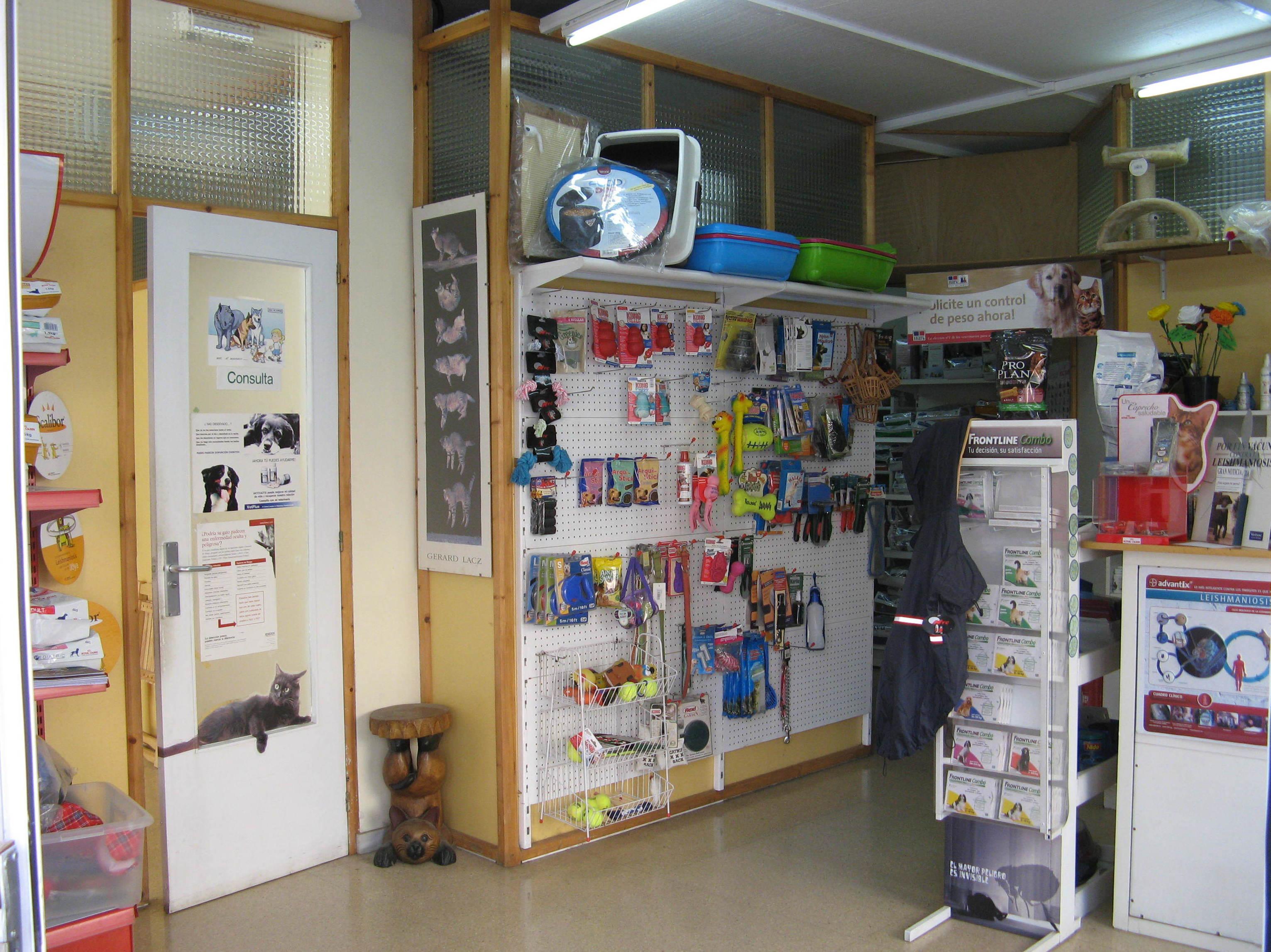 Foto 8 de Clínica veterinaria en Sabadell | Gos i Gat clínica veterinària sl