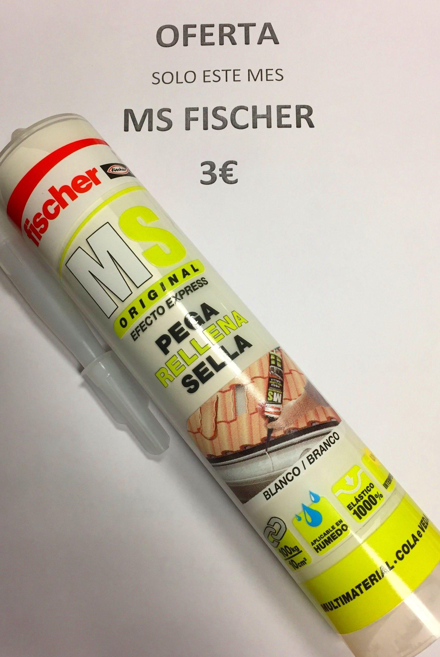 MS FISCHER