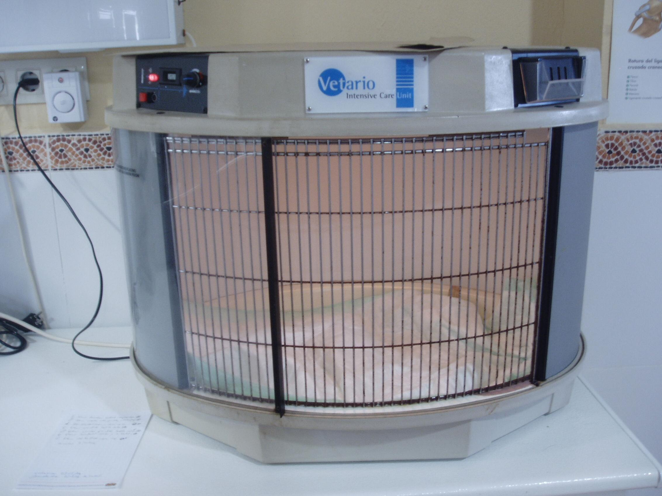 incubadora con temperatura controlada y aporte de oxigeno, para atender a cachorritos recien nacidos o pacientes críticos