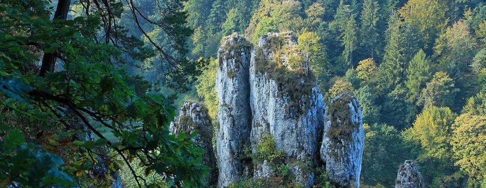 Foto 2 de Servicios turísticos en  | Oficina de Turismo de Polonia