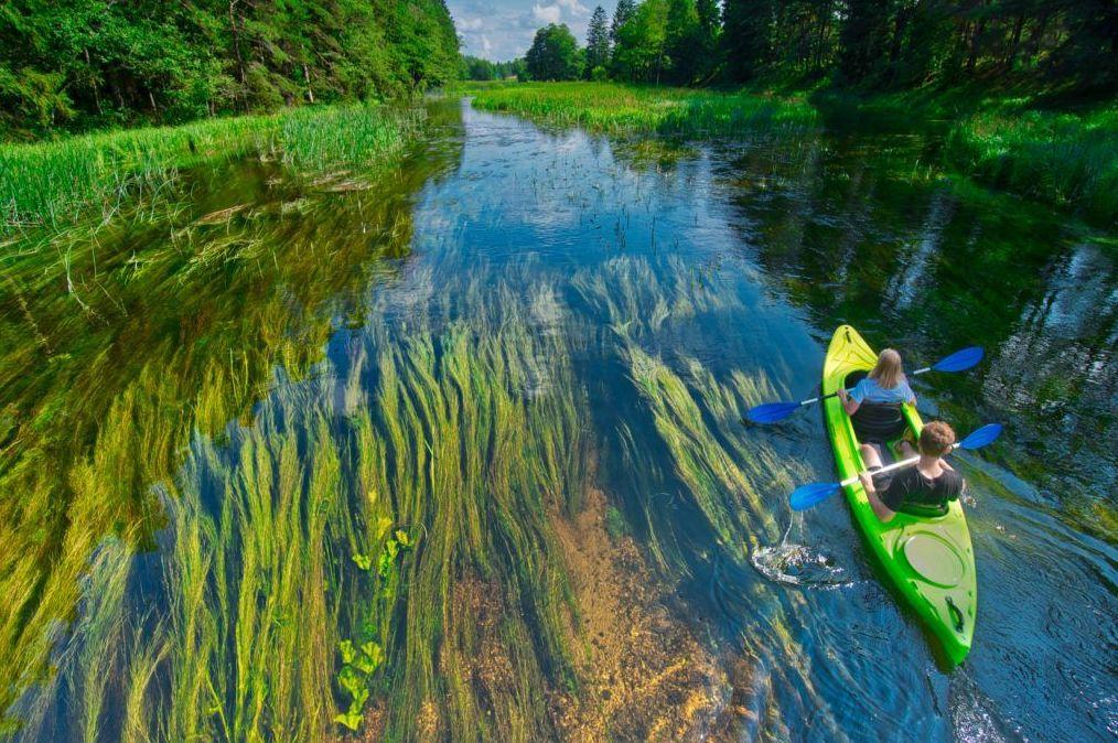 Foto 9 de Servicios turísticos en  | Oficina de Turismo de Polonia