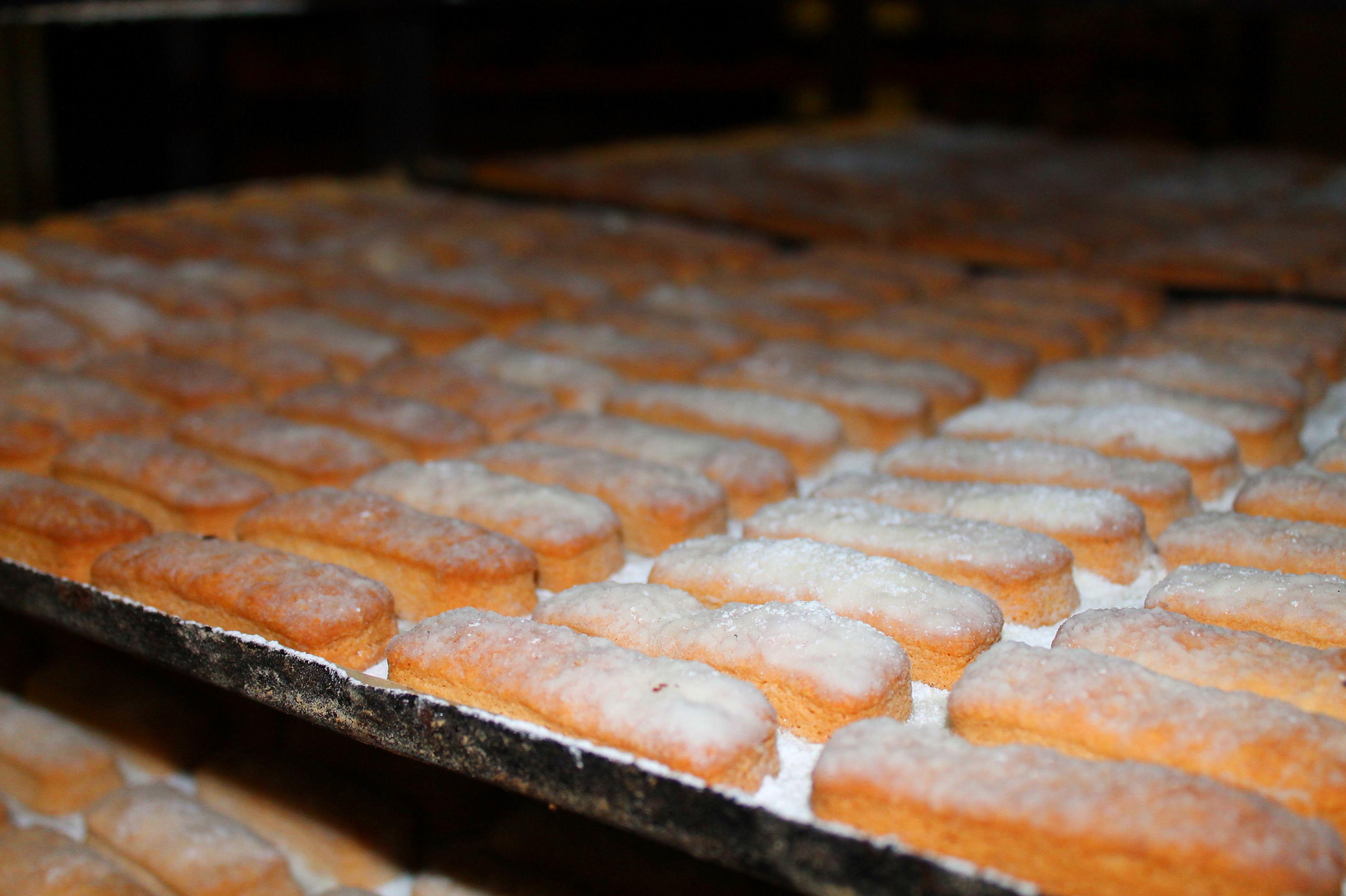Foto 42 de Obrador artesano con amplia variedad de panes en Jaén | Panaderías y Confiterías Rodríguez