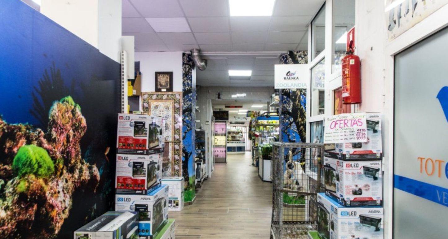venta de animales exóticos, Paterna Valencia