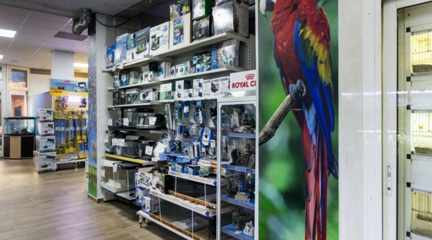 Foto 11 de Tienda de animales en Paterna   Zoolandia