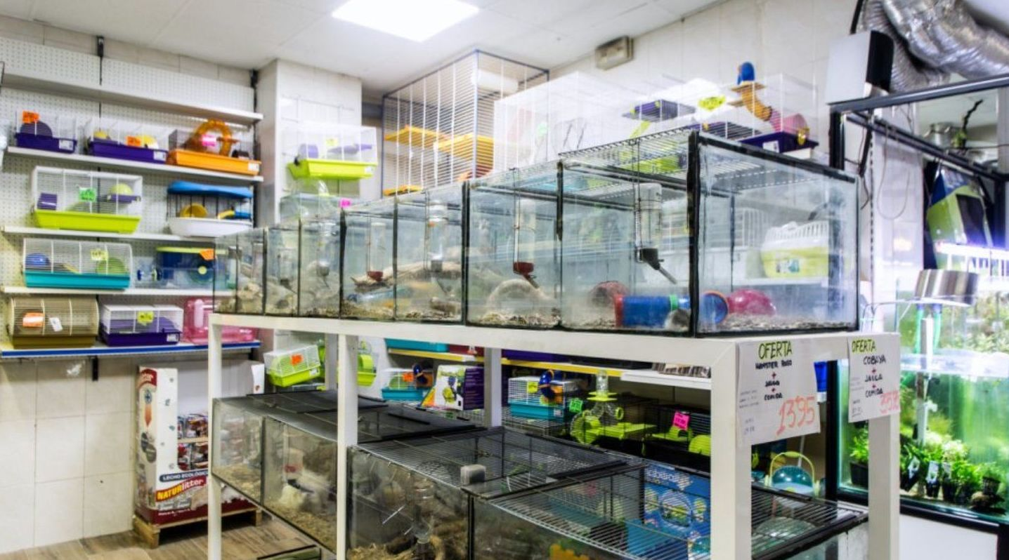 Foto 2 de Tienda de animales en Paterna | Zoolandia