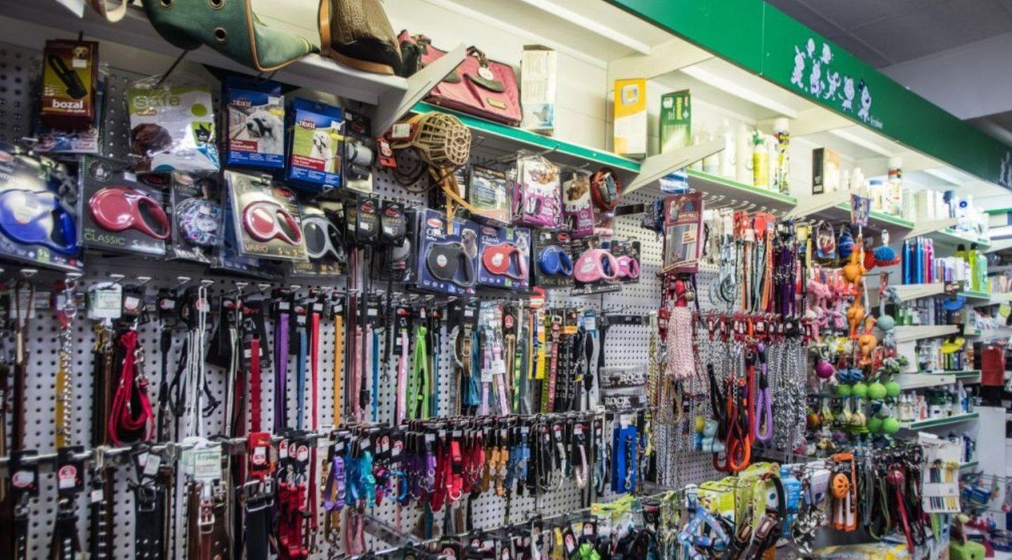 accesorios para mascotas, en Paterna Valencia