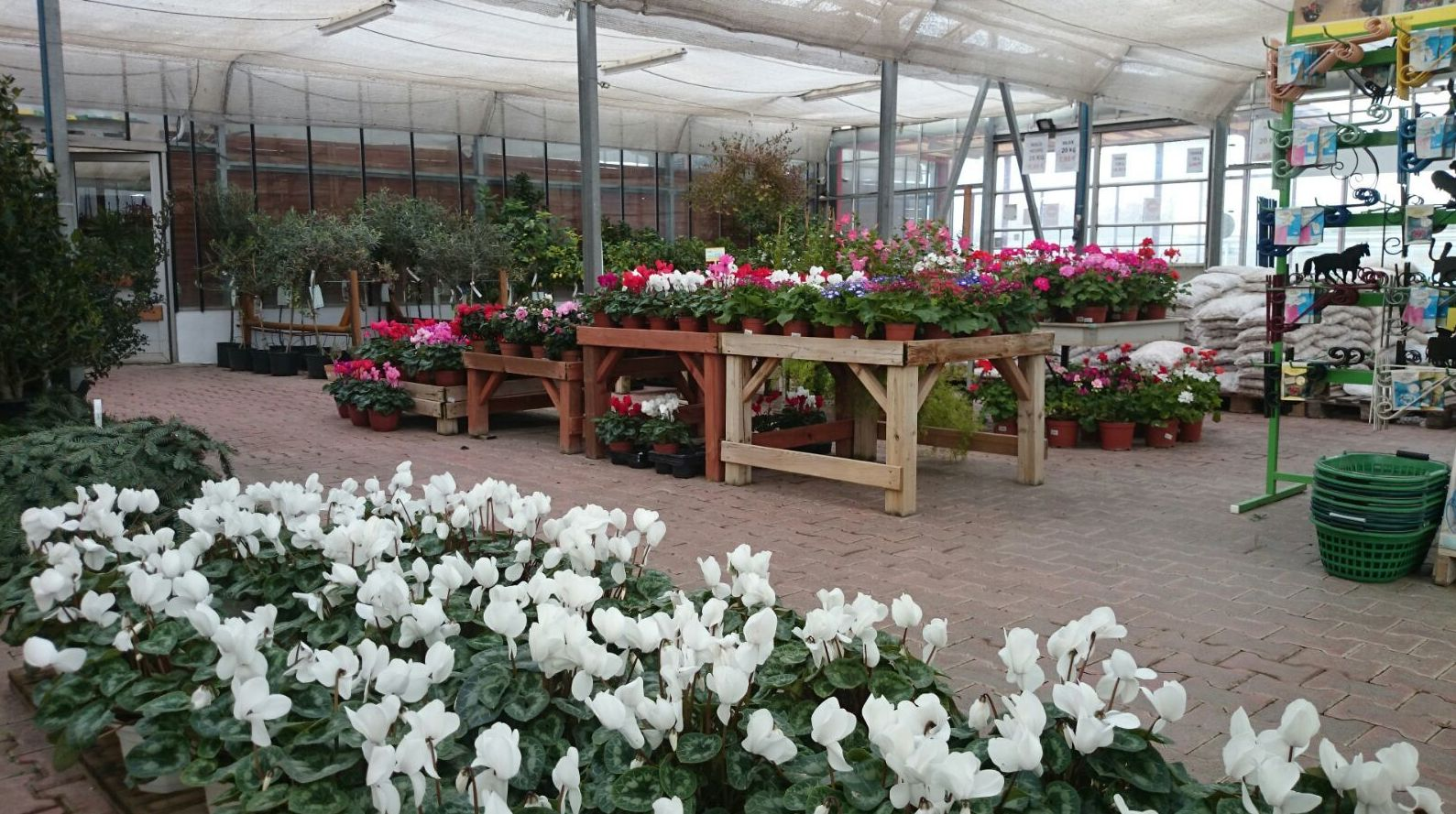 Centre de jardinería