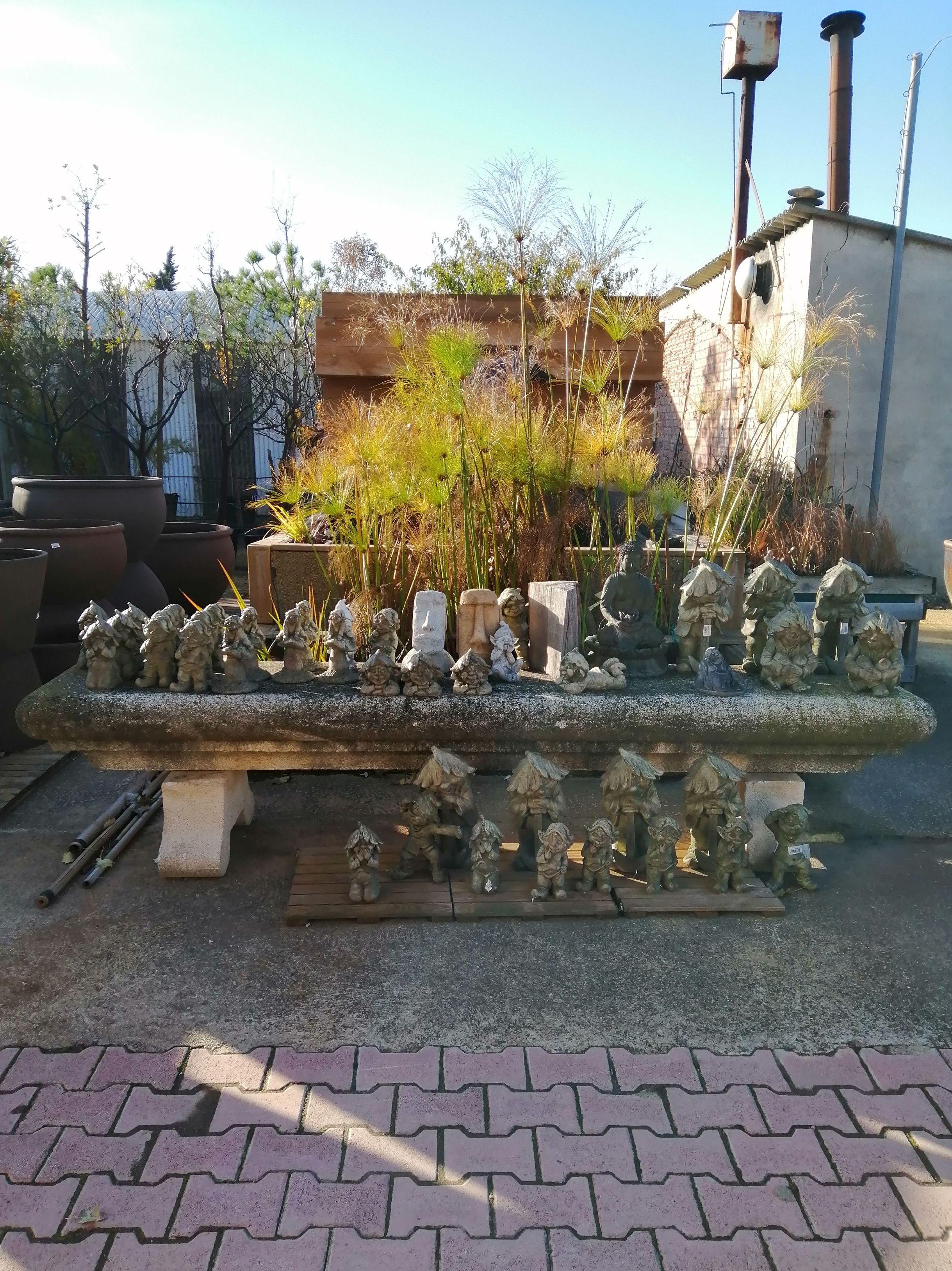 Foto 9 de Excellent range of products for all kinds of gardens en Castelló d'Empúries | Mercajardí