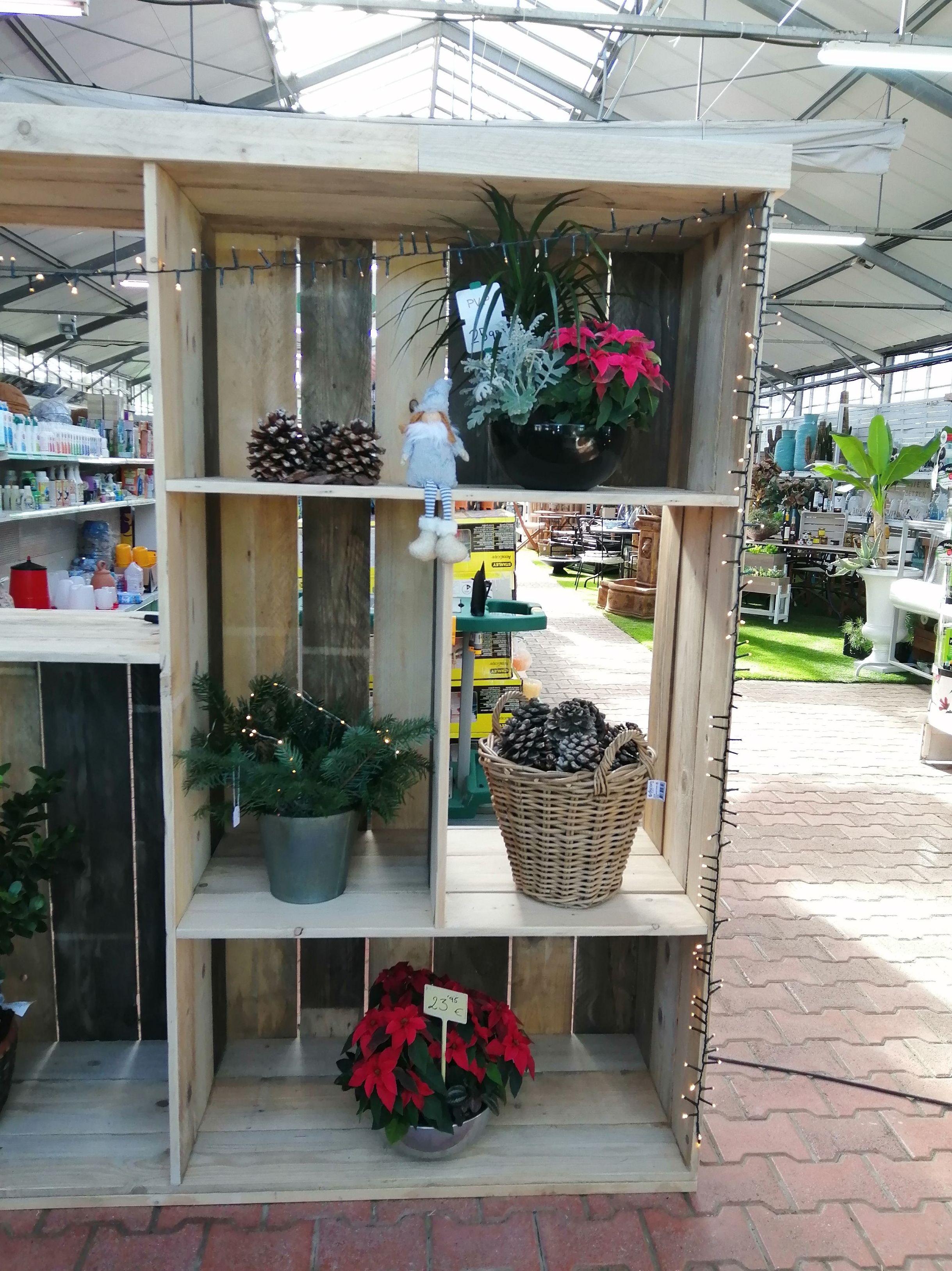Foto 5 de Excellent range of products for all kinds of gardens en Castelló d'Empúries | Mercajardí