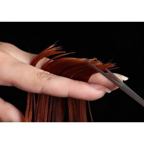 Peluquería: Servicios de Academia de Peluquería Franchesca