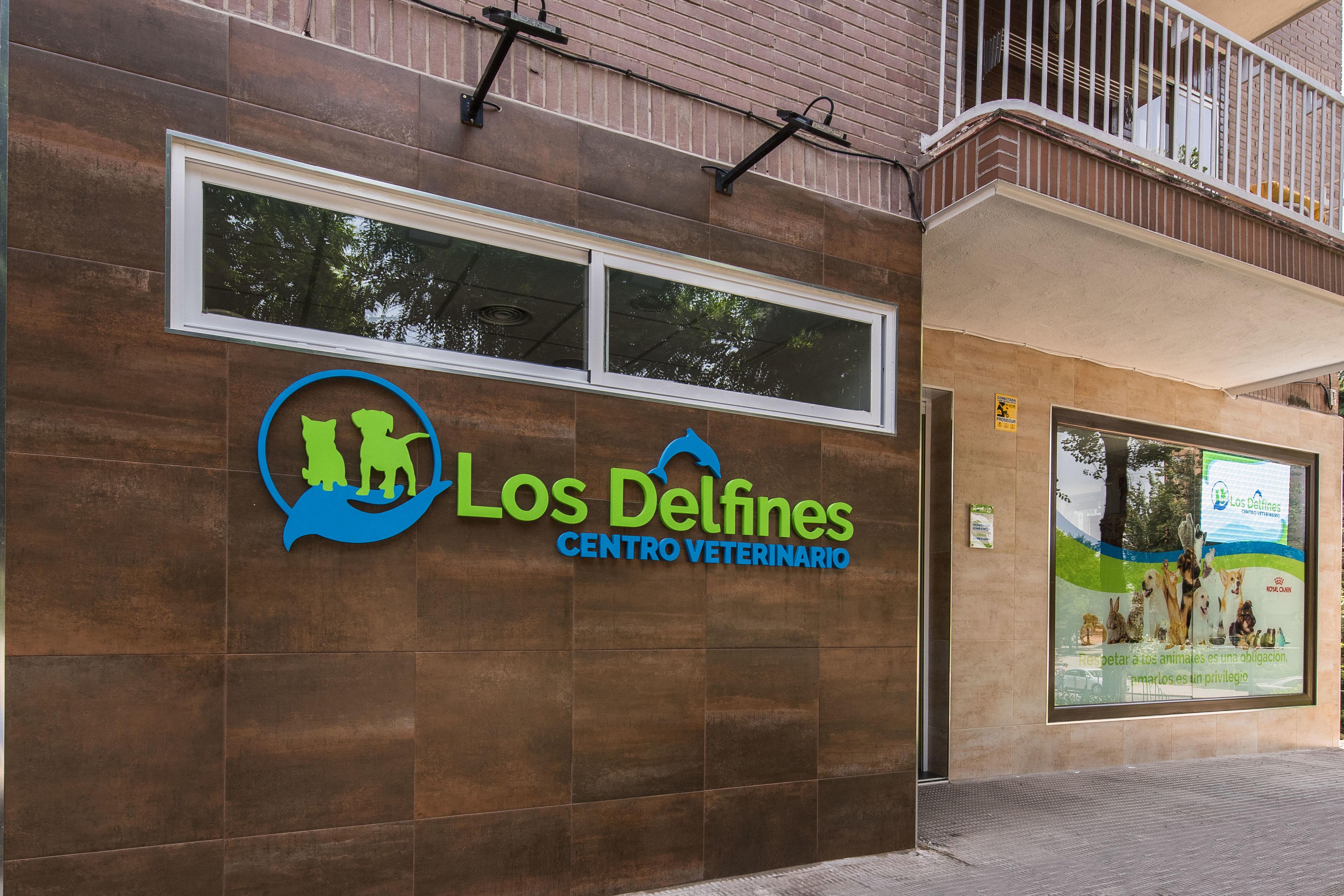 Foto 1 de Veterinarios en Coslada | Centro Veterinario Delfines