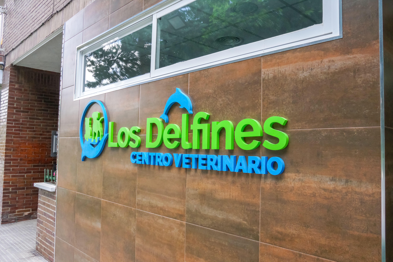 Foto 2 de Veterinarios en Coslada | Centro Veterinario Delfines