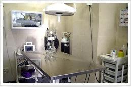 Cirugía: Servicios de Centro Veterinario Delfines
