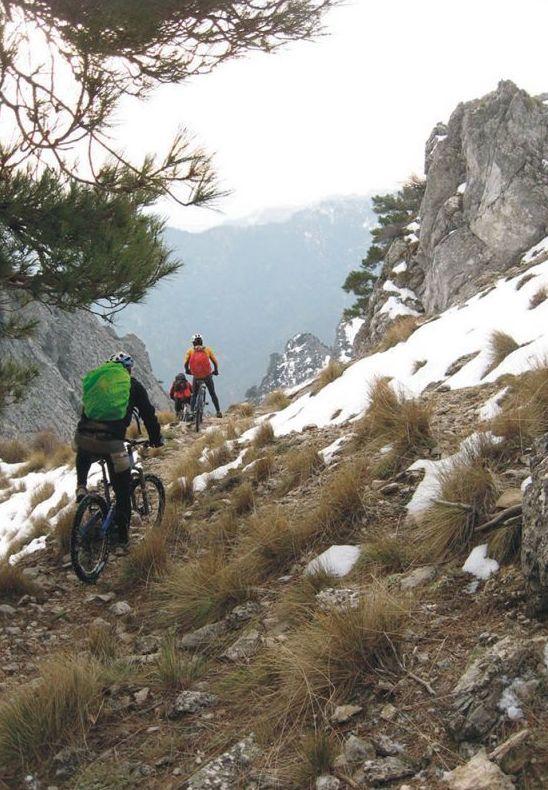 Bicicletas de montaña: Productos de Alucinatura