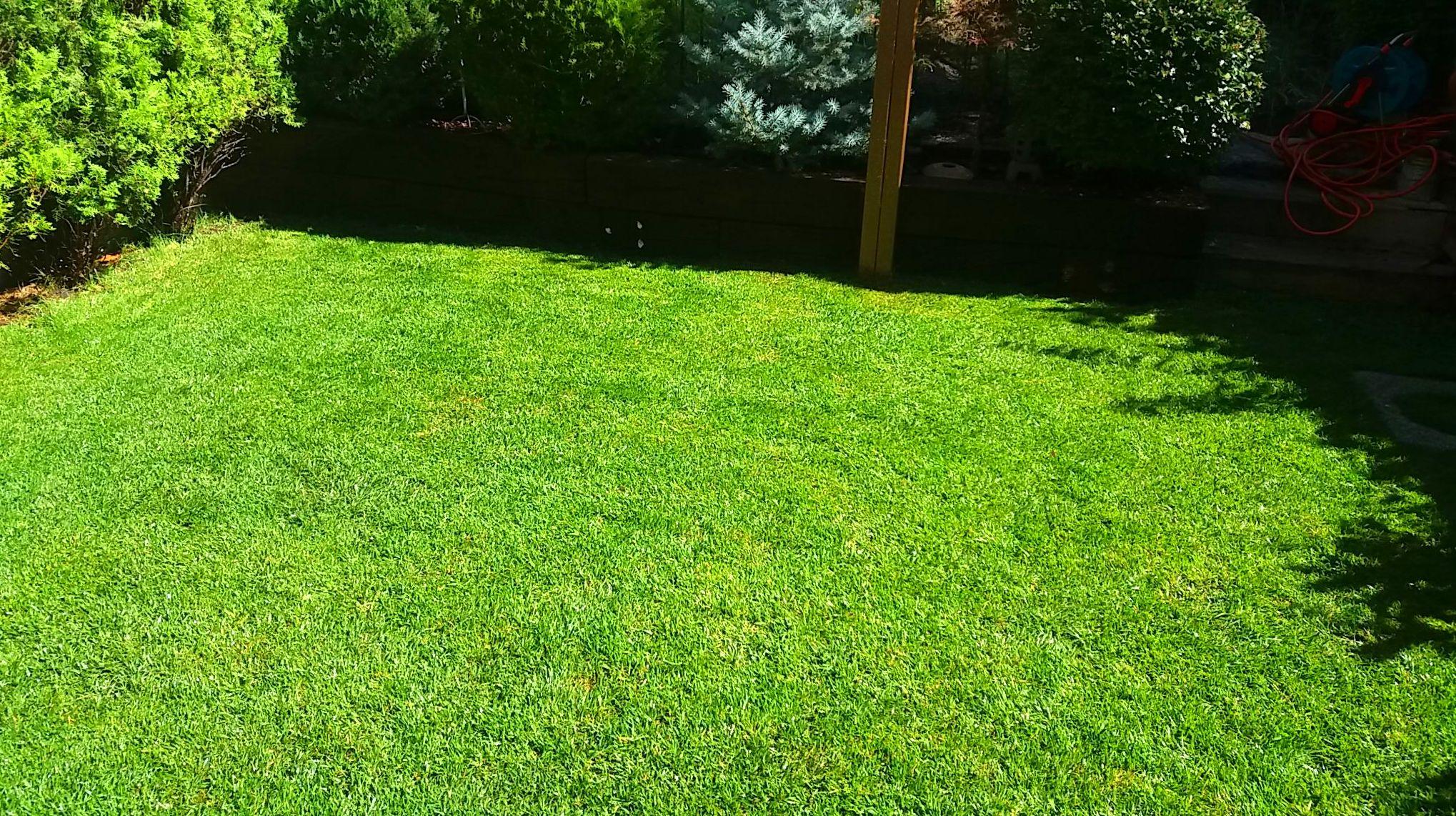 Foto 48 de Especialistas en reformas integrales, mantenimiento de jardines e impermeabilizaciones en Toledo | Reformas DS
