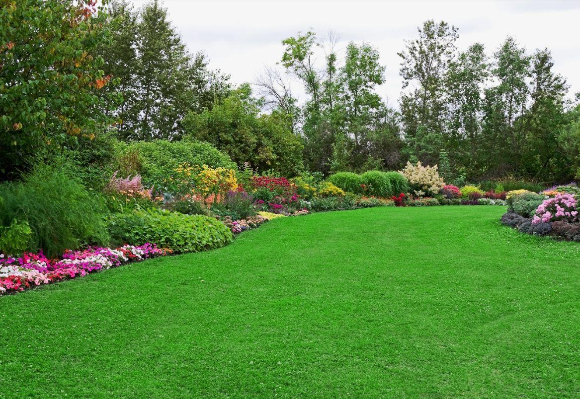 Jardinería: Servicios de Reformas DS