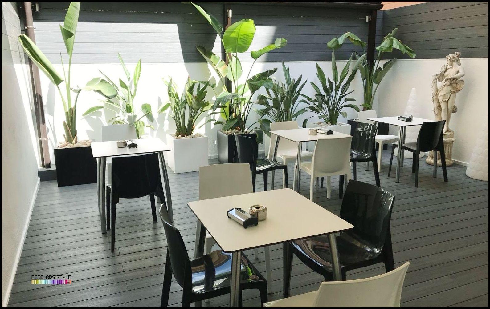 Diseño Exterior Terraza Bar