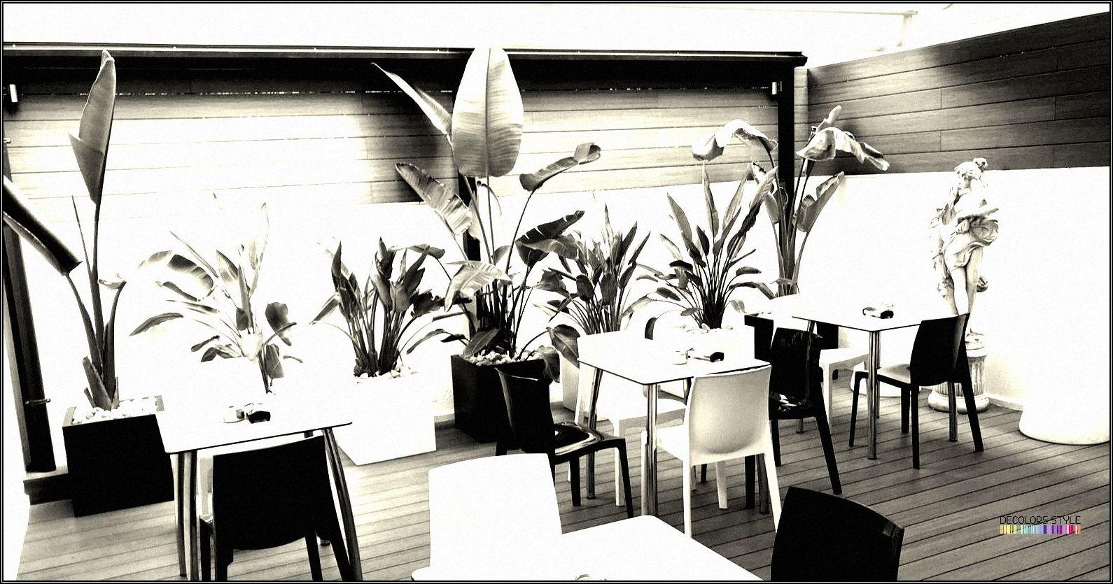 Diseño Terraza Bar