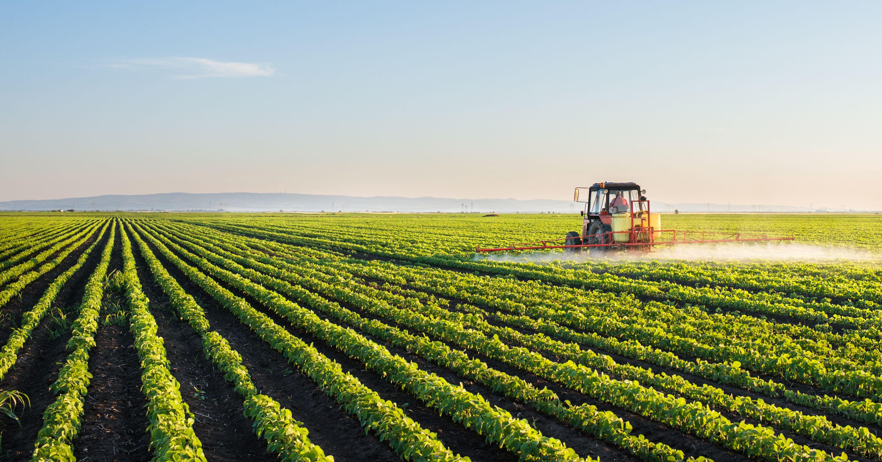 Insecticidas agrícolas Ciudad Real