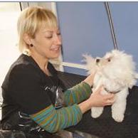 PELUQUERíA CANINA: Servicios de Clínics Veterinària