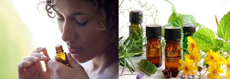 Aromaterapia: TERAPIAS de Equilibrio Salud Armonía