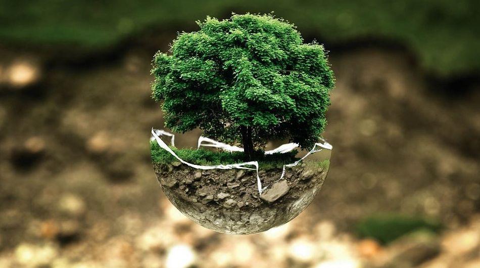 Empresa de limpieza ecológica en Bilbao