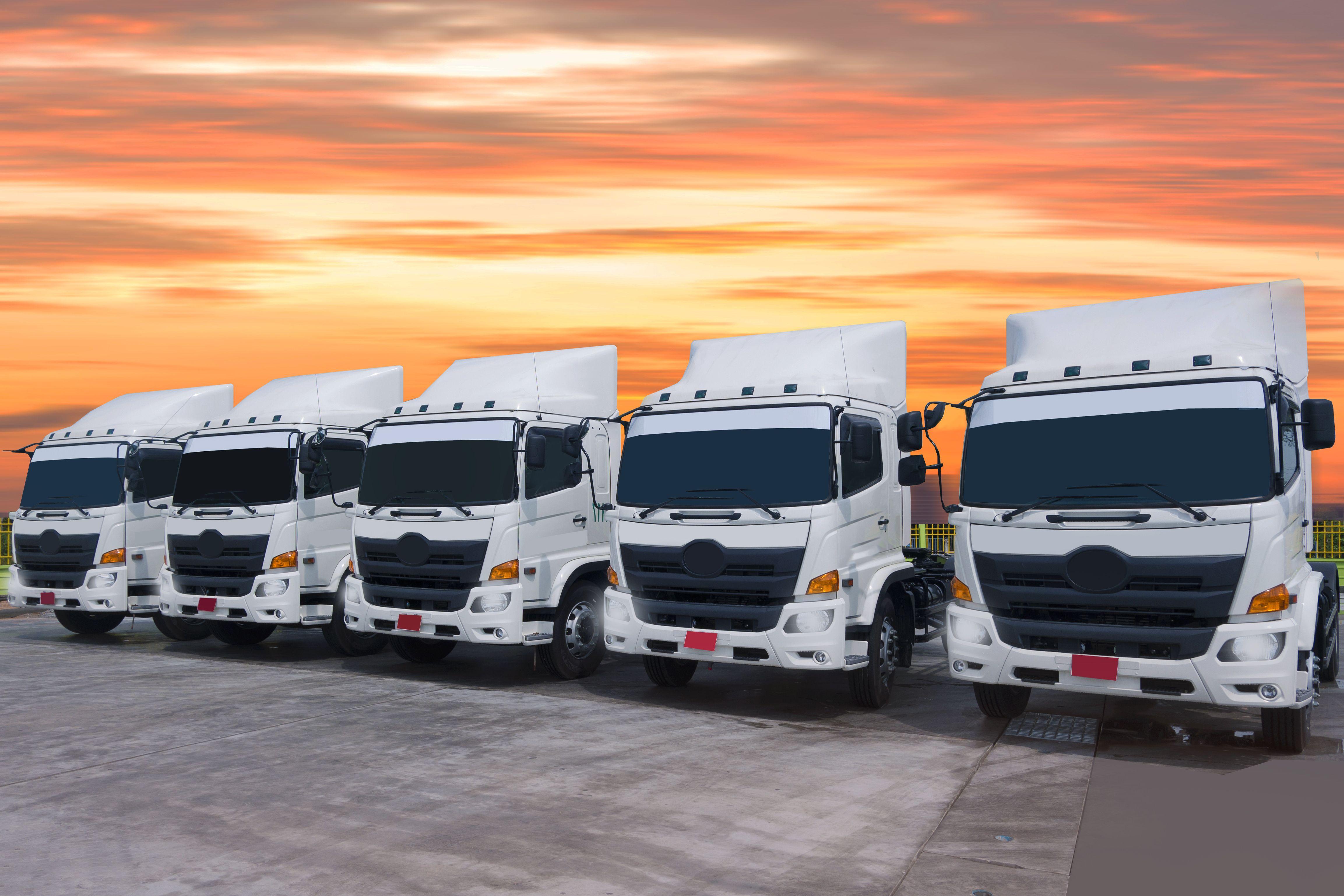 Flota de vehículos: Catálogo de Transportes Peña